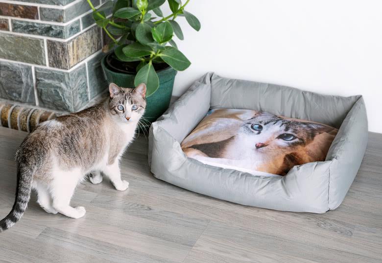 Personalisierte Produkte für unsere tierischen Freunde