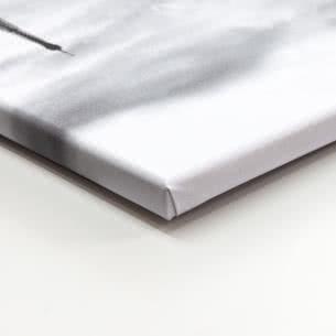 Canvas-taulu