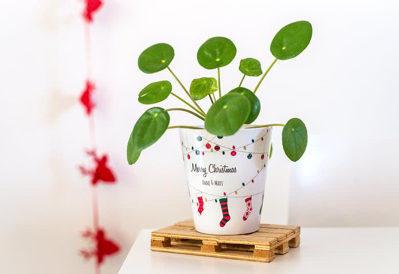 Je crée mon pot de fleurs