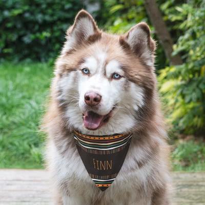 Gepersonaliseerd sjaaltje voor honden en katten