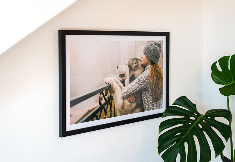 Framed Photo Posters