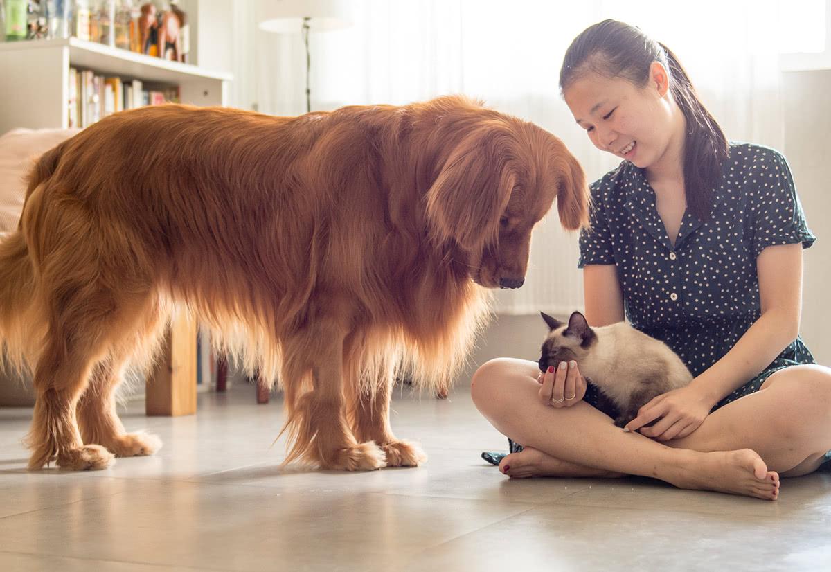 Personalisierte Geschenkideen für Haustierbesitzer