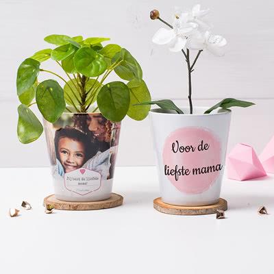 Moederdag Cadeau De Leukste Cadeaus Voor Mama Smartphoto